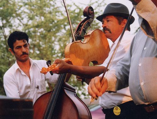 Szaszcsavasi Band